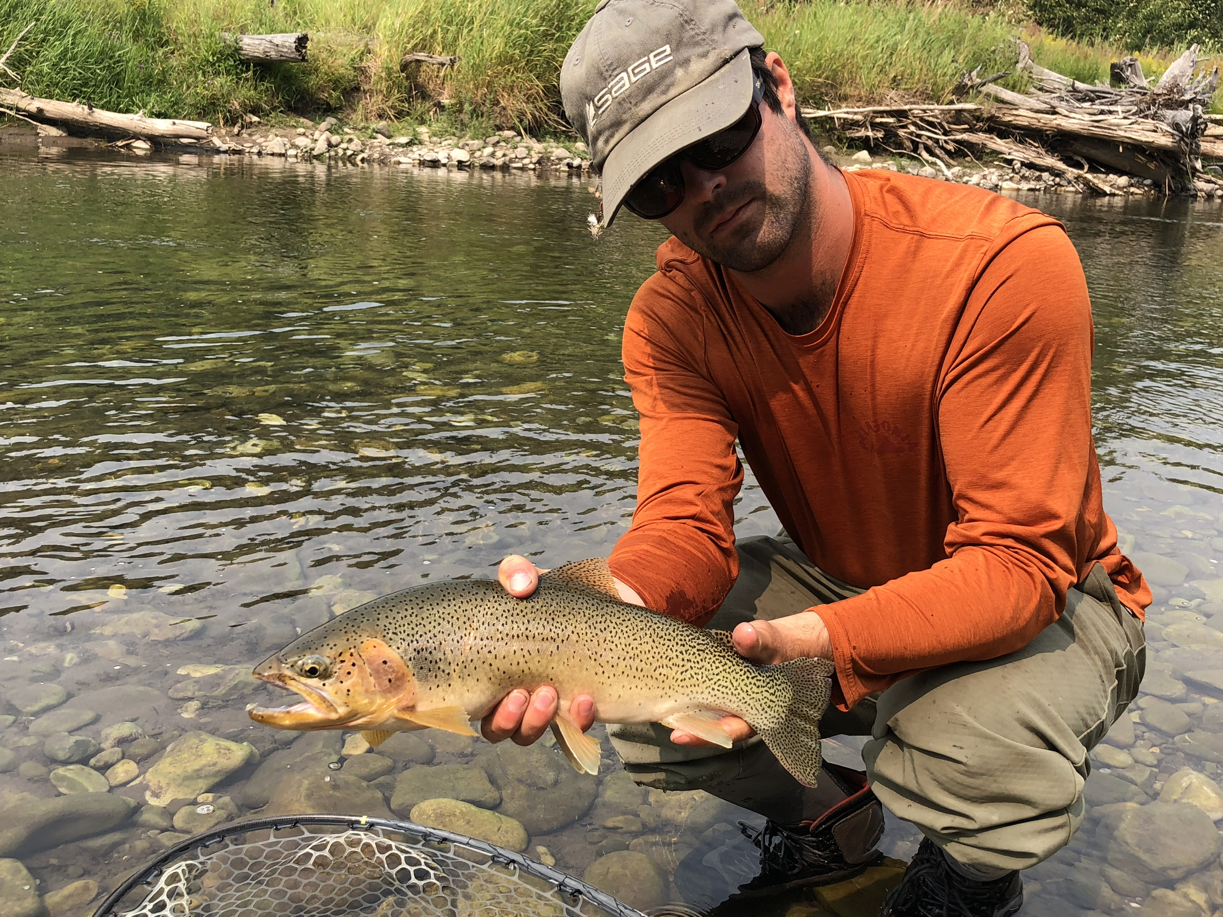 b6f00661d2d0 Fernie Fly Fishing Guides - Choose the BEST guides in Fernie!